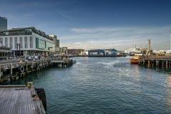 Lungomare di Wellington, isola del nord della Nuova Zelanda Fotografie Stock Libere da Diritti