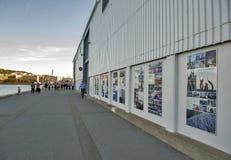 Lungomare di Wellington, isola del nord della Nuova Zelanda Fotografia Stock Libera da Diritti