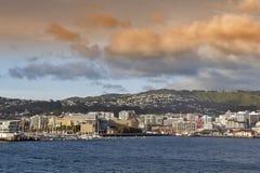 Lungomare di Wellington, isola del nord della Nuova Zelanda Immagine Stock Libera da Diritti