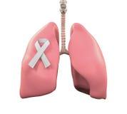 Lungor och Lung Cancer Awareness Ribbon royaltyfri illustrationer