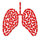 Lungs Royalty Free Stock Photos