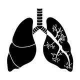 Lungs in Black and White Stock Images