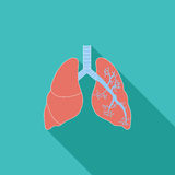Lungs in Black and White Stock Image
