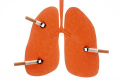 Lungs damaged by cigarettes Stock Image