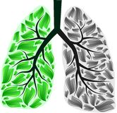 Lungs in danger Stock Photo