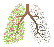Lungs. Effect after smoking and disease vector illustration