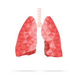 Lungs faceted. Illustration of human lungs with faceted low-poly geometry effect, vector Stock Images