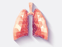 Lungs faceted. Vector illustration of human lungs with faceted low-poly geometry effect Royalty Free Stock Photos