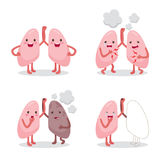 Lungs Healthy And Sickness Set, Cartoon Character, Human Interna Royalty Free Stock Image