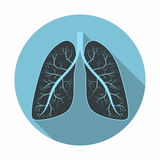 Lungs. Human lungs anatomy symbol with shadow. Flat design. Vector stock illustration