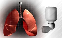 Lungs and inhaler used by asthma patients Royalty Free Stock Image