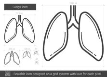 Lungs line icon. Stock Image