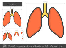 Lungs line icon. Stock Photo