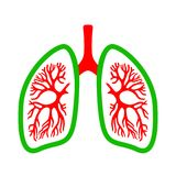 Lungs medical vector icon Stock Image