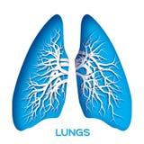 Lungs origami. Stock Photos