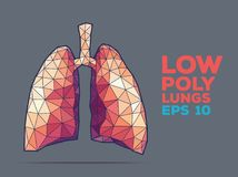 Lungs poly faceted Royalty Free Stock Photography