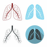 Lungs set. Human lungs anatomy symbol set. Vector royalty free illustration