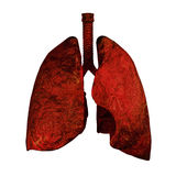 Lungs of Smokers. Human lungs 3d rendering illustration Stock Images