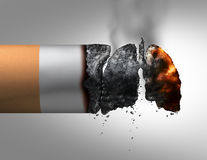 Lungs And Smoking. Medical concept as a lit cigarette with the ashes shaped as a human breathing organ as a nicotine addiction and smoking habit risk with 3D Stock Photos