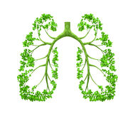 Lungs - tree. The tree forming the form of human organ, as lungs Stock Photo