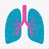 Lungs vector icon. Cold cough, acute bronchitis, lung asthma and stop cough mucolytic treatment royalty free illustration