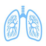 Lungs vector icon. Isolated on white background stock illustration