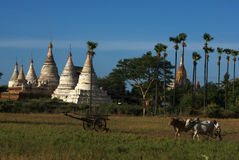 Luogo Archeological di Bagan - Myanmar | La Birmania fotografia stock