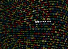 Luogo CRISPR-Cas9 sulla sequenza del DNA Immagini Stock Libere da Diritti