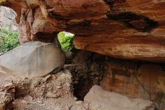 Luogo del patrimonio mondiale di Bhimbetka- Immagine Stock