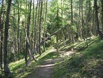 Luogo delle capanne dei noncières, Francia fotografie stock