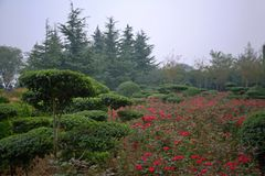Luopu公园,洛阳 免版税库存照片
