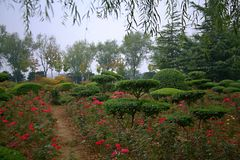 Luopu公园,洛阳 图库摄影