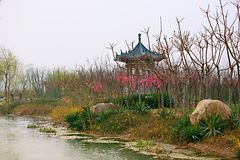 Luoyang Sui and Tang site Botanical Garden. Luoyang Sui Tang city site Botanical Garden It was built in December 2005. It covers an area of 2864 mu. It is stock photo
