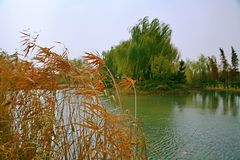 Luoyang Sui and Tang site Botanical Garden stock images