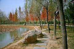 Luoyang Sui and Tang site Botanical Garden stock photo