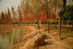 Luoyang Sui and Tang site Botanical Garden royalty free stock photography