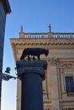 Lupa Capitolina, der capitoline Wolf, der Romulus und Remus einzieht lizenzfreies stockbild