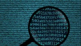 A lupa descobre a palavra que phishing na tela Animação conceptual da busca relativa à segurança do computador filme
