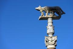 Lupa Senese - symbol av Siena Italy Arkivfoto