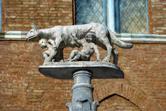 Lupa Senese - symbol av Siena Italy Arkivfoton