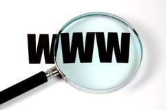 Lupa y texto WWW Fotografía de archivo libre de regalías