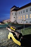 Lupca城堡 库存图片