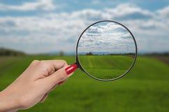 Lupe, die Vision der Natur korrigiert Stockfotos