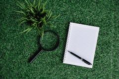Lupe, Grünpflanze und leeres Notizbuch auf grünem Gras Stockfotografie