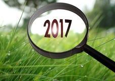 Lupe mit dem Wort 2017 auf Grashintergrund Stockfoto