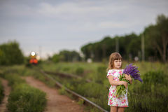 Lupin girl on railroad tracks Royalty Free Stock Photography
