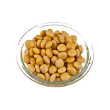 Lupin or Lupini Beans Stock Photography