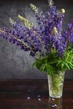 lupine Ainda a vida com roxo floresce o ramalhete no vaso Imagem de Stock Royalty Free