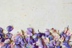 Пинк и пурпурные lupine цветки на мраморной предпосылке День рождения, День матери, карта дня Валентайн, 8-ое марта, свадьбы или  стоковые фотографии rf