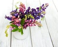 Lupines в вазе Стоковые Фотографии RF